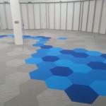 carpet rochester ny
